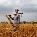 करोडौँका सिँचाइ आयोजना सम्पन्नः किसान हर्षित